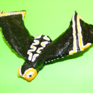 Wire-formed Bat