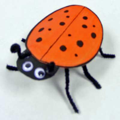 Little Ladybird